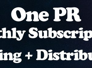 1 Press Release/Month – Subscription
